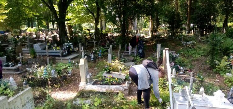 Porządkowanie opuszczonych grobów dziecięcych